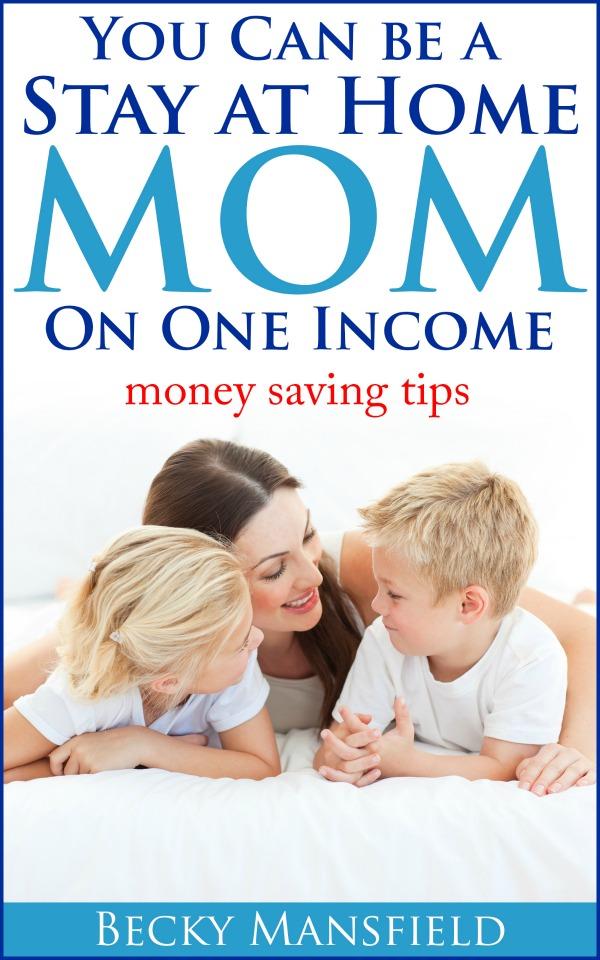 sahm one income
