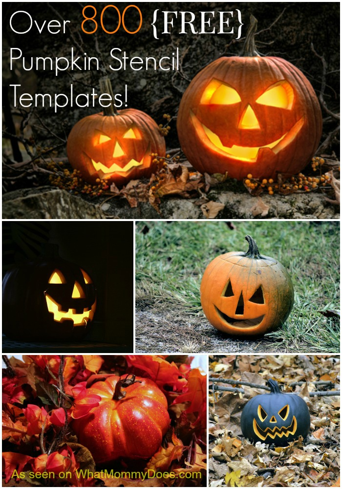 image relating to Angry Birds Pumpkin Carving Patterns Printable called Totally free Pumpkin Stencils