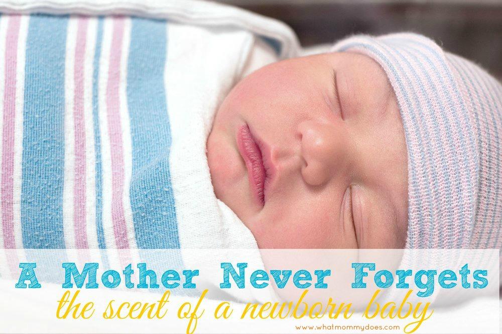 Newborn baby boy resting in hospital