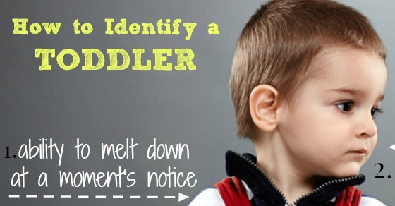 FACEBOOK how to identify a toddler WhatMommyDoes