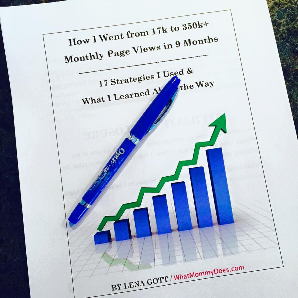 Blog Traffic Ebook - How I Increased My Monthly Page Views to Over 350,000 in 9 Months