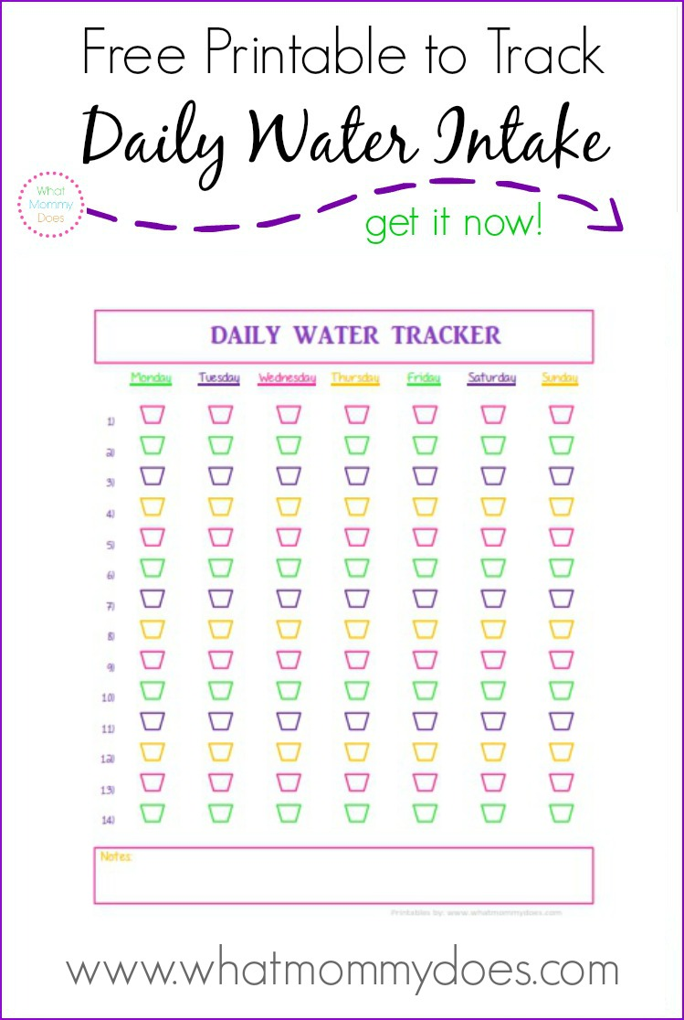 graphic about Water Tracker Printable identified as 6 Wholesome Lunch Recommendations Down below 500 Energy for Occupied Mothers (moreover