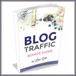 Blog Traffic Bonus Guide: 3 Ways to Get More Page Views!