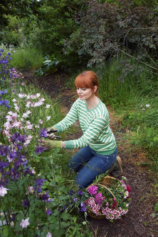 Woman picking flowers in garden as a low cost gift idea